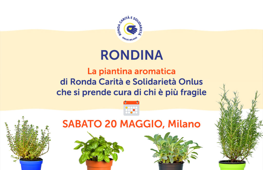 "Arriva nelle piazze ""La Rondina"""