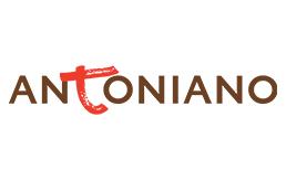 antonianoonlusportfolio